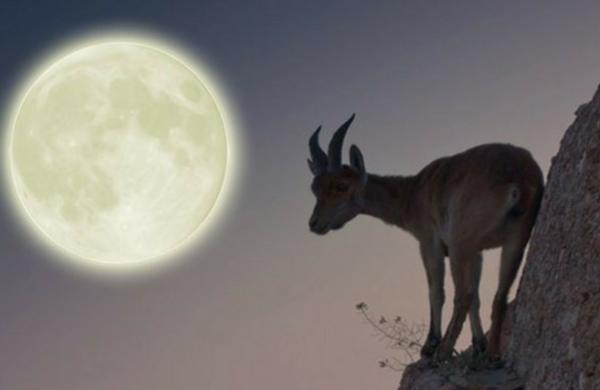 Capricorn Full Moon – Beyond Polarities – 12th July 2014