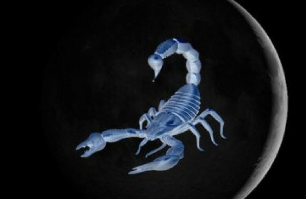 Scorpio Full Moon – Intensely Feeling – 4th May 2015