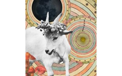capricorn new moon – 1.1.2014