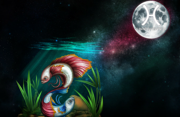 Pisces Full Moon – Colliding or Creative Forces – 29th August 2015