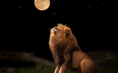 Full Moon In Leo – Purification – 24th January 2016