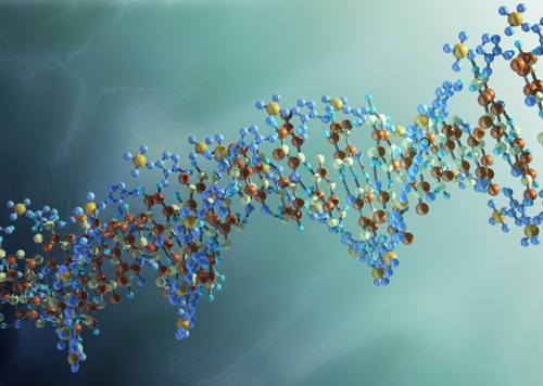 Healing Our Ancestors & Past Lives Through Our DNA – The Ascension Path
