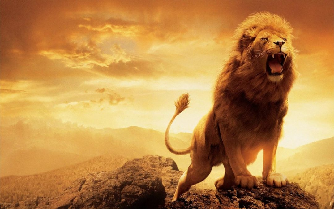 New Moon in Leo – Authentic Truth